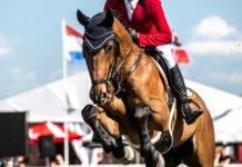 HorsePro Sport