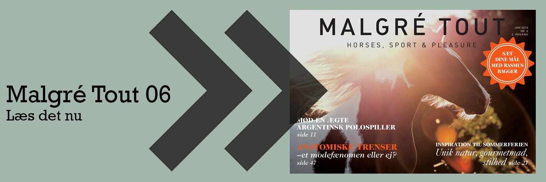 1500x500_MalgreTout06_preview