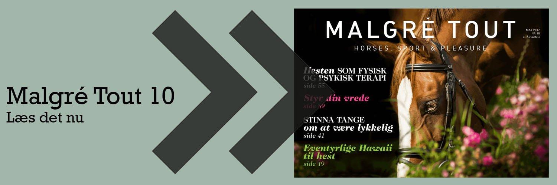 1500x500_MalgreTout10_preview