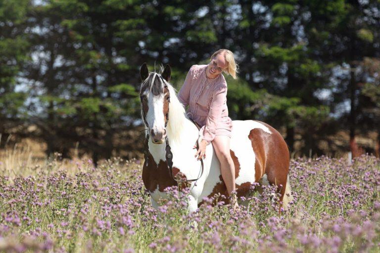 Sådan påvirker trauma hestens nervesystem, hvis det ikke forløses