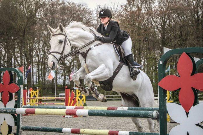 Heste-dm