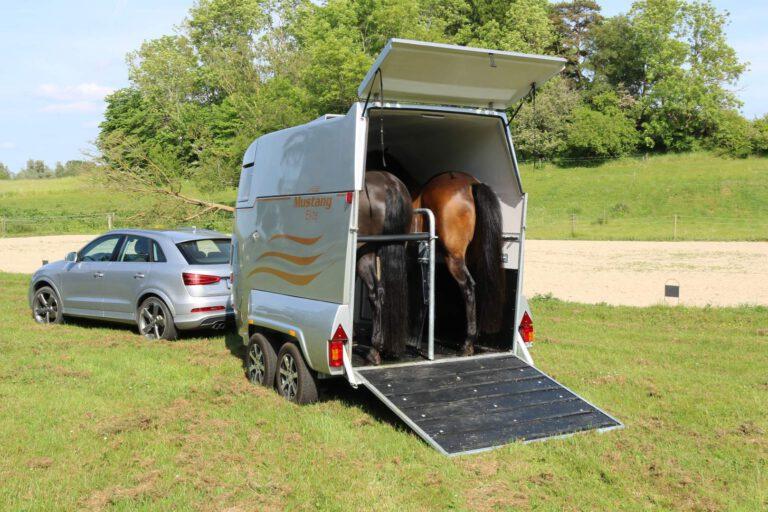 Når temperaturerne stiger: Din hestetrailer kan blive som en ovn