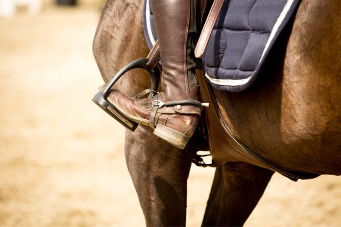 rytter sidder på hest