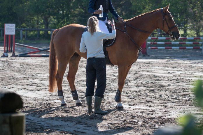 Træner, rytter og hest på ridebane