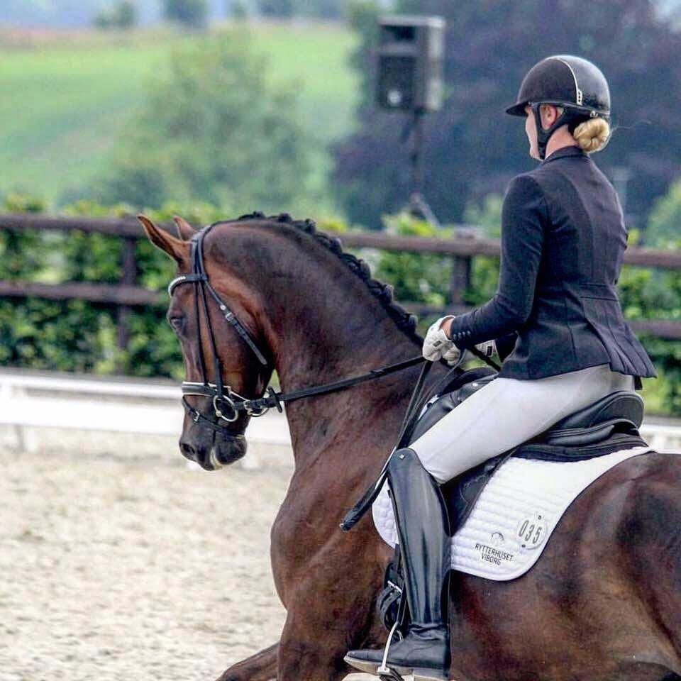 Simone hoppe rider dressur