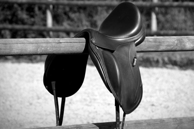 Er det tid til sadelmager? Tjek om din sadel passer til din hest