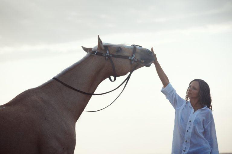 Din og din hests horoskop for sommeren – det kommer til at ske