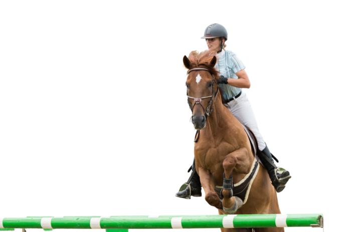 Hest springer