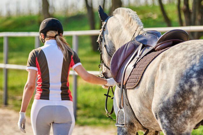 Kvinde trækker hest på ridebane