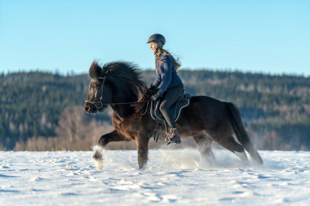 Islænder rides i sne.