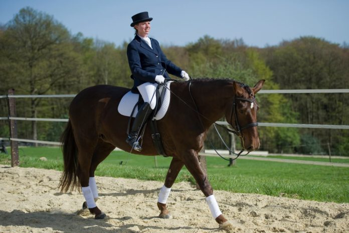 Rytterens kropsbevidsthed hjælper hesten