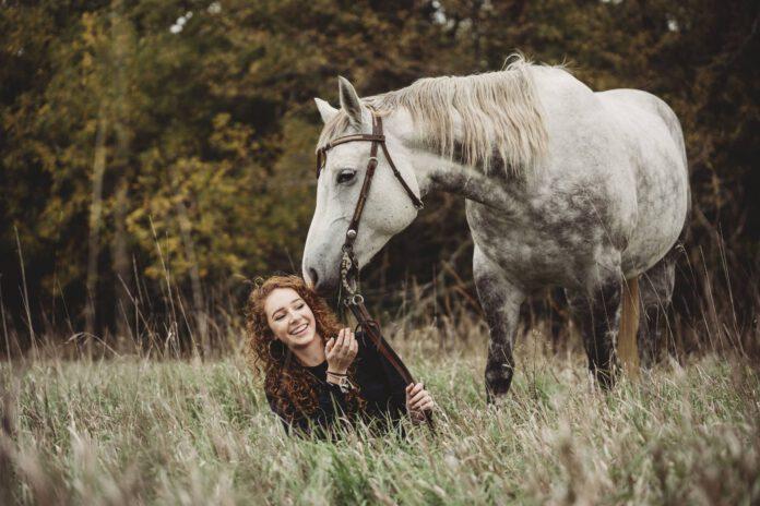 Hest og rytter i græs