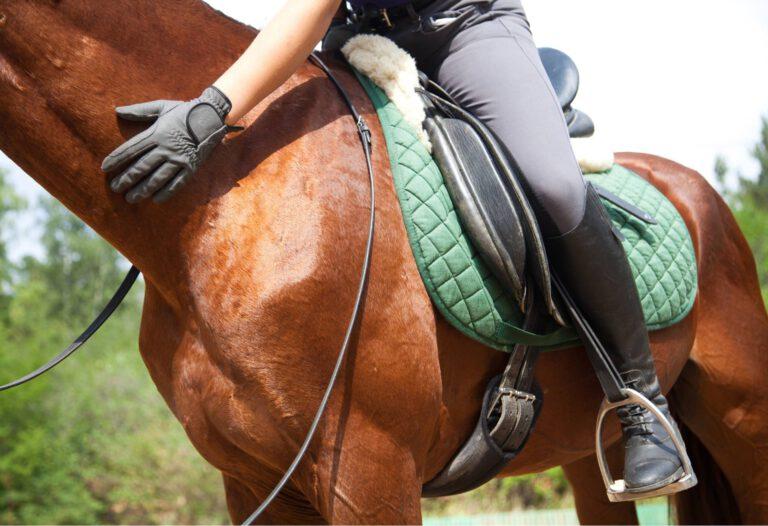 Undersøgelse: Ryttervægt kan forhindre hesten i at bruge ryggen korrekt