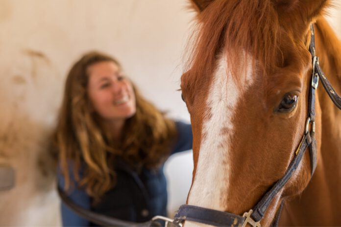 Hestefolk er glade for at give gode råd