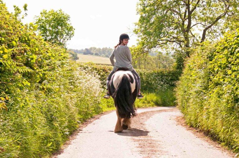 Ferie er dejligt. Ferie med din hest er endnu skønnere