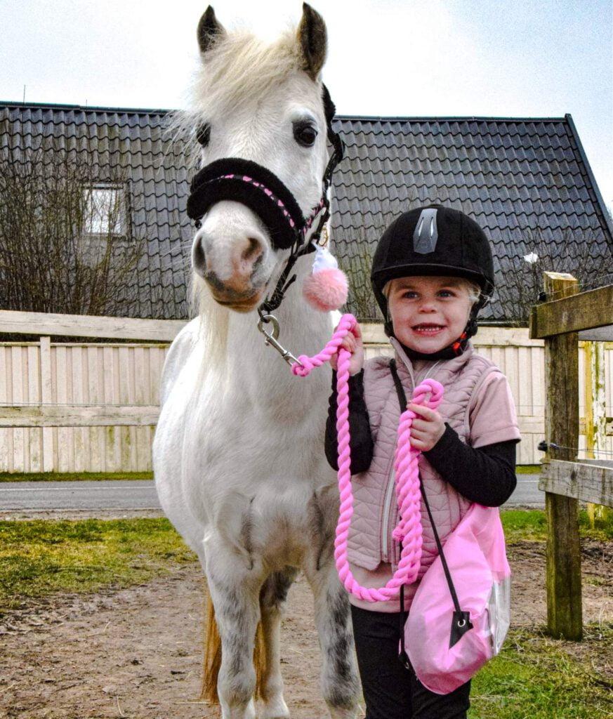 Barn og hest ved fold
