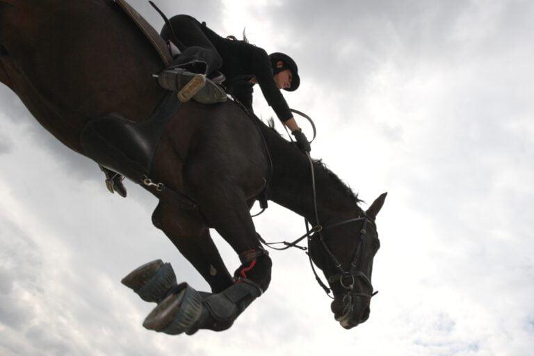 3 springryttere fortæller: Derfor er det så fedt at springe med hesten!
