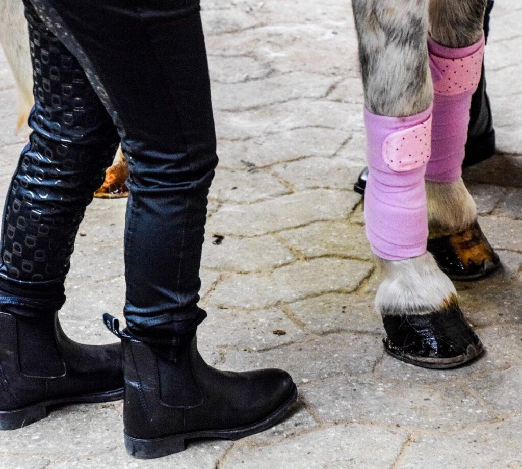 Et barns ben og hestens ben