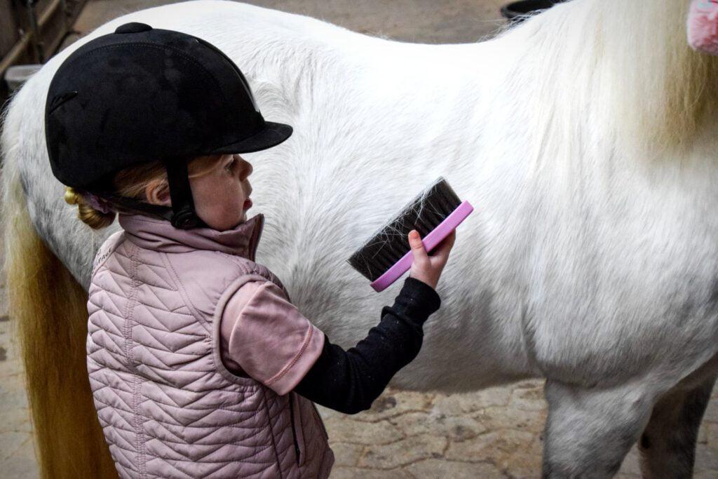 Barn og hest på staldgang strigler