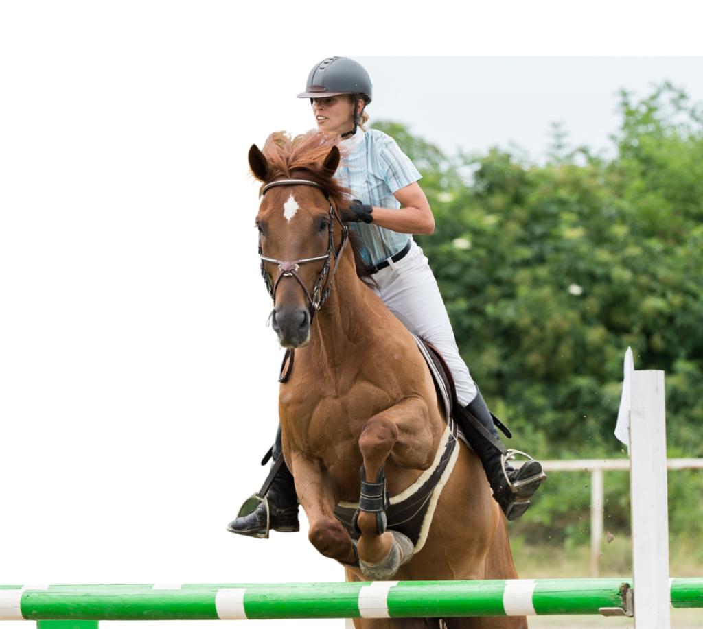 Pige træner springning med sin hest, og er på vej over springet.