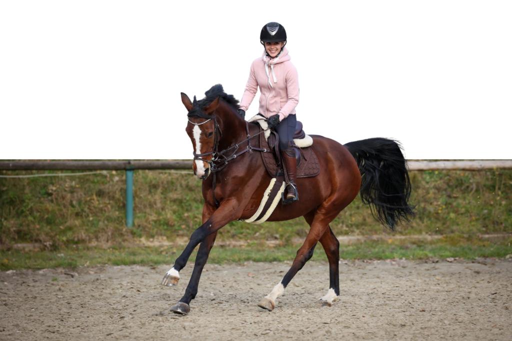 Glad rytter træner springning med sin hest på banen.