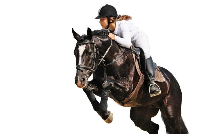 Rytter træner springning med sin hest, og er på vej over et spring.