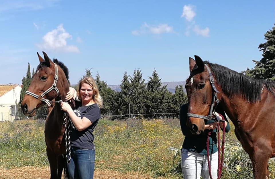 A better life 4 horses med to af hestene
