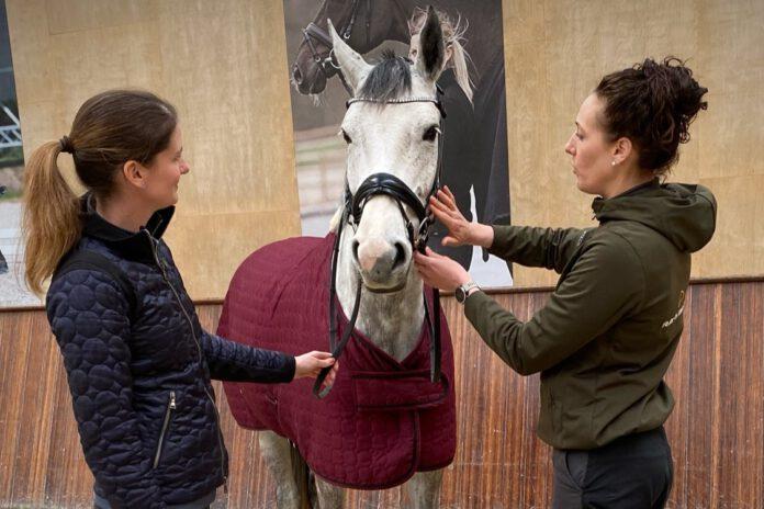 Hest får tilpasset trense