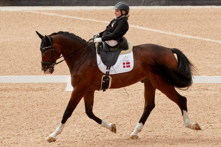 Hvordan får man hesten til at lave en schenkelvigning, når man ikke selv har en schenkel?