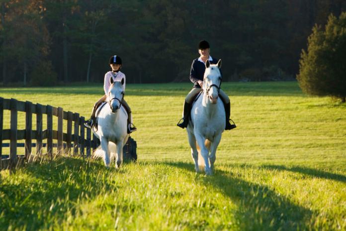 To ryttere rider i naturen
