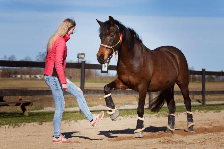 4 ting, som også kan bruges til jordarbejde med hesten