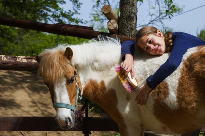 Pige på ridelejr med hest