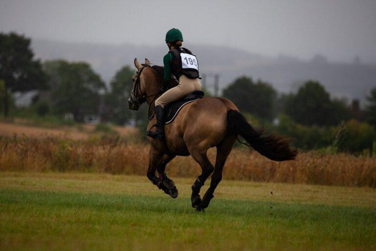 Siger din hest nej tak til galoppen? Her er nogle af de mulige grunde