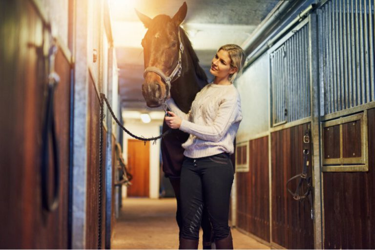 TTouch: Hjælpen til nervøse og anspændte heste er lige ved hånden