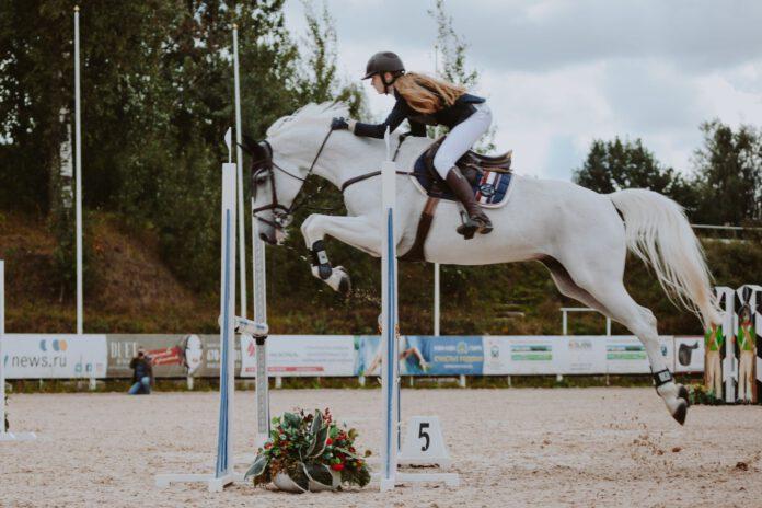Pige og hvid hest springer