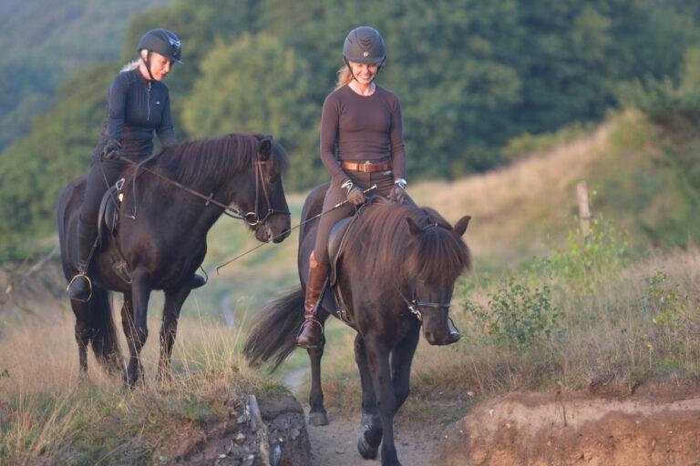 """Islandske heste, natur og livsglæde: """"Det er bedre end at meditere"""""""