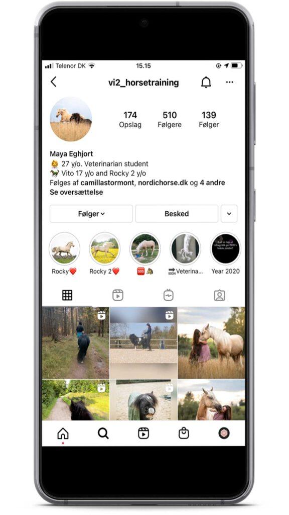Vi2_horsetraining er en instagrammer med holistisk syn på heste