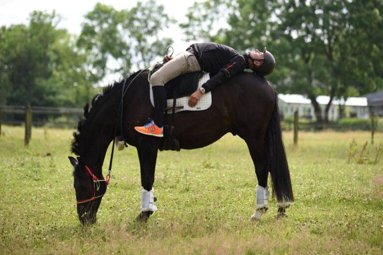 """Claus Toftgaard: """"Man bør max gøre noget med hesten i 5 sekunder ad gangen"""""""