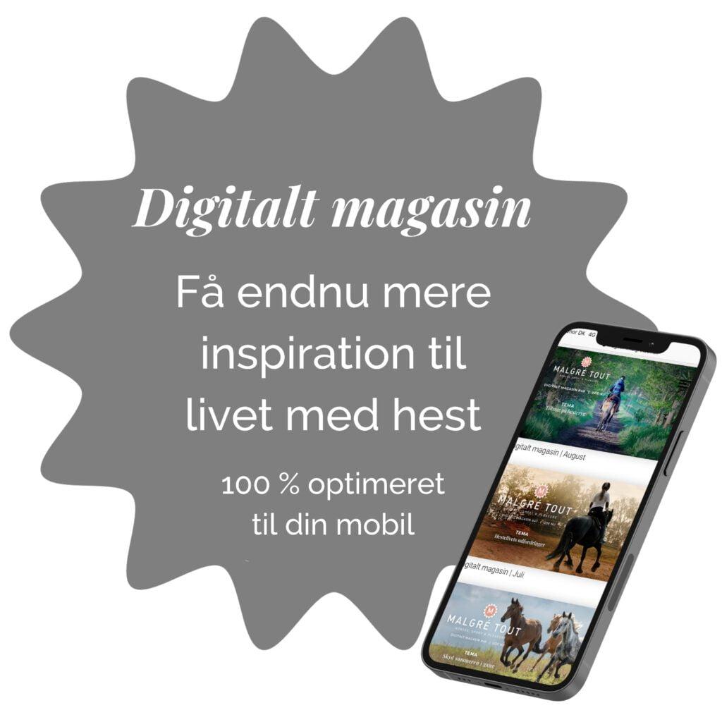Digitalt magasin splash med mobil
