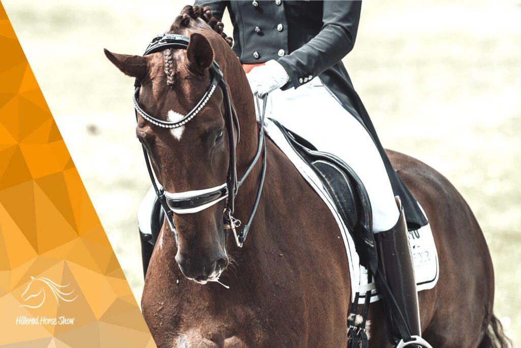 Dufour og Bohemian Hillerød Horse Show