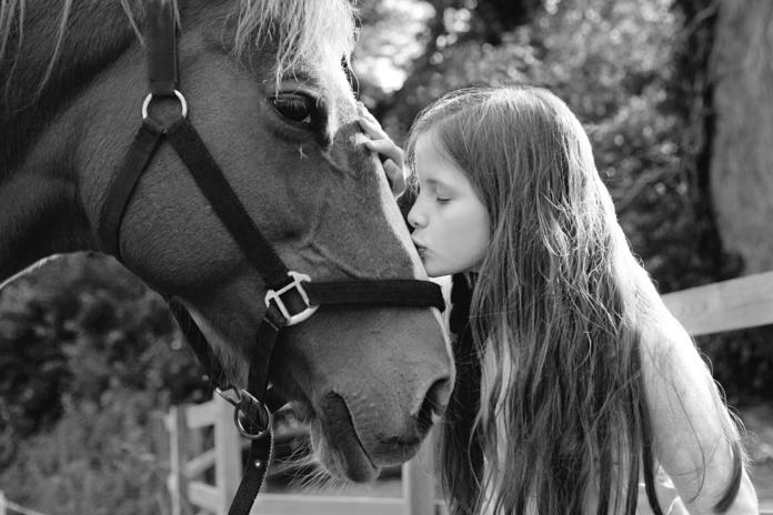 Pige kysser hest