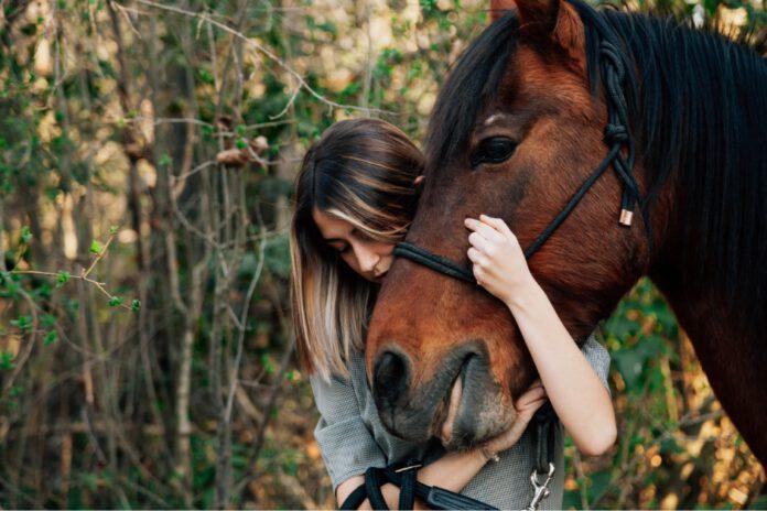 Kvinde krammer hest